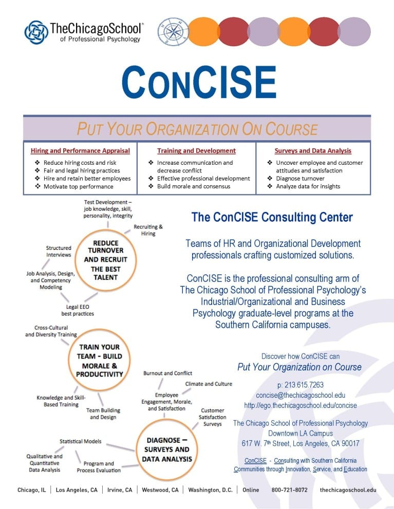 ConCISE consulting center - infographic